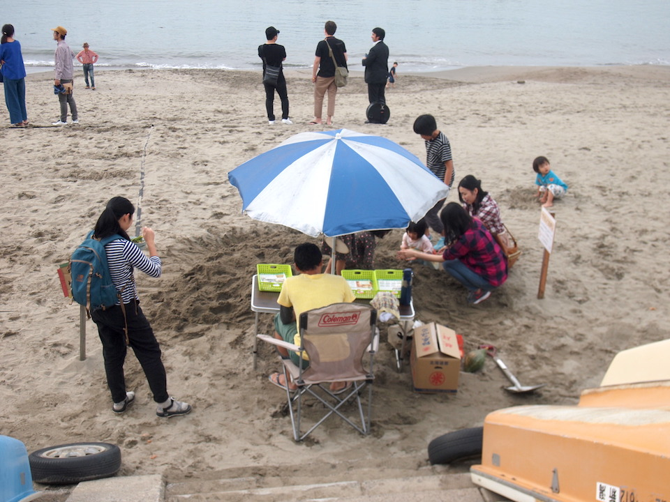 砂浜から野菜が出現、「ベジ畑」